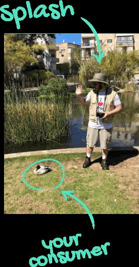 boris waves to ducks in square